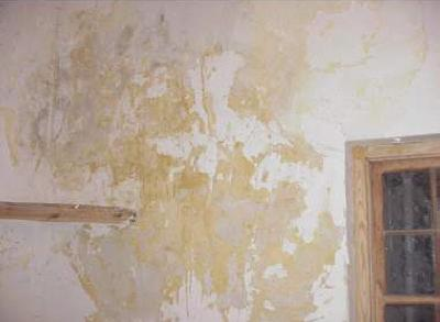 La mancha de humedad de juana de ibarbourou - Manchas blancas en la pared ...